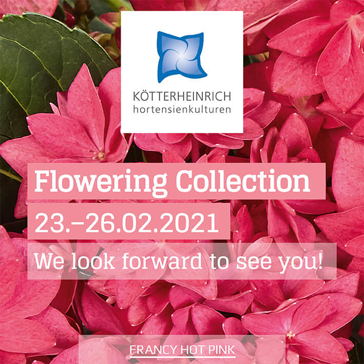Flowering Collection 2021